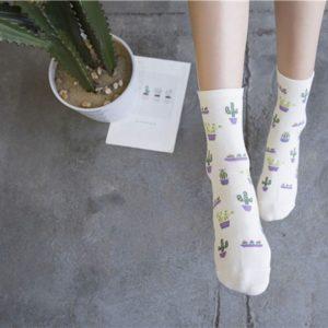 Ebay chaussette cactus - Autour de Marine