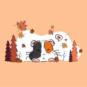 Illustration chonchon automne